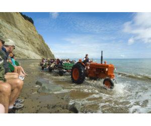 GANNET BEACH ADVENTURES